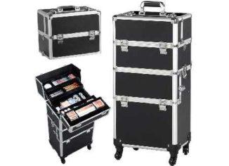 Makeup Train Cases
